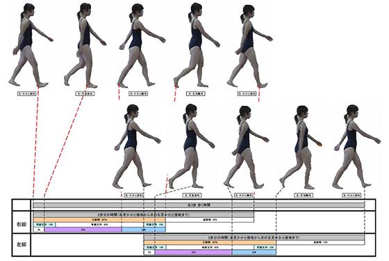「歩行分析」の画像検索結果